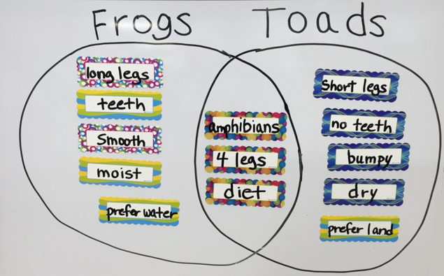 Who knew there were so many differences between frogs and toads? This is FUN!
