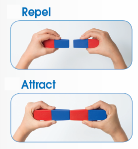 repel and attract