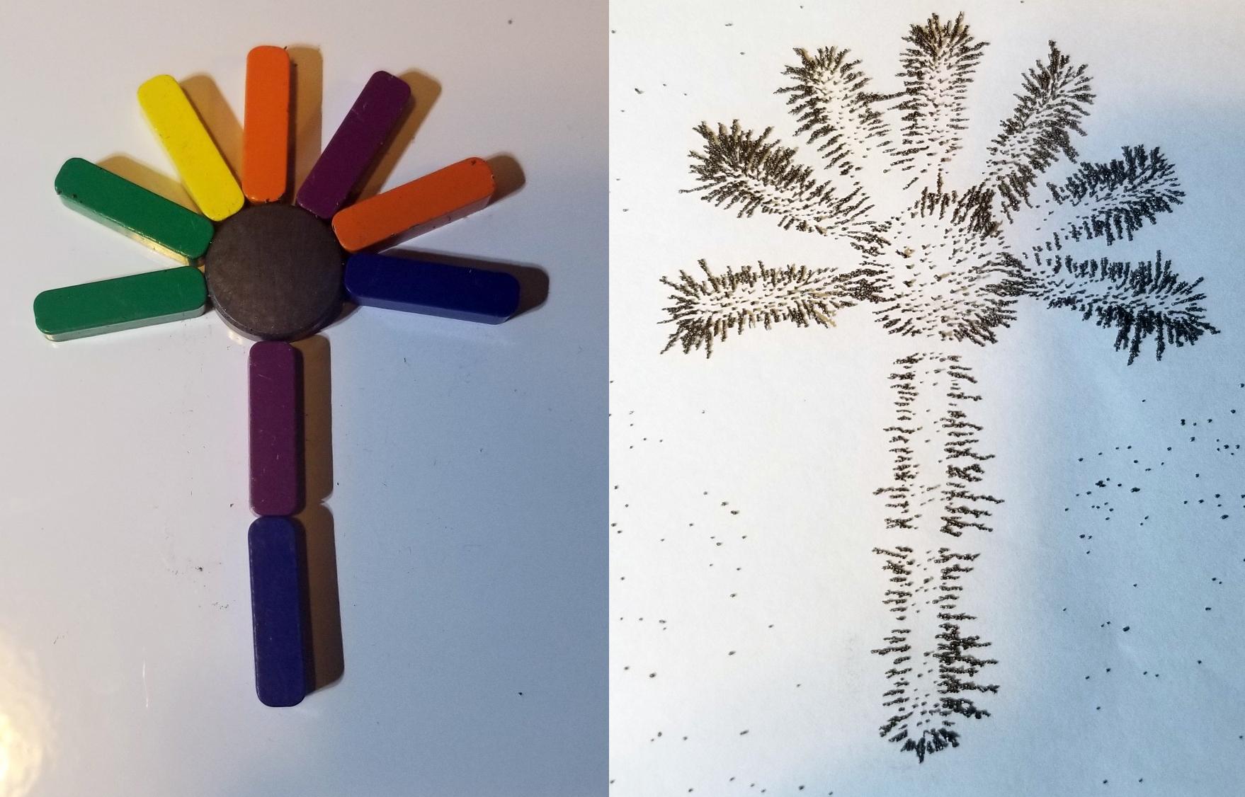 iron filing flower art